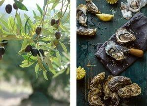 food drink Languedoc
